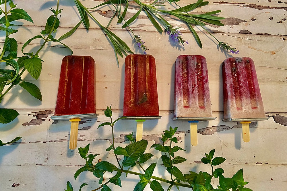 Hibiscus and Mint popsicles – Dairy free and refined sugar free